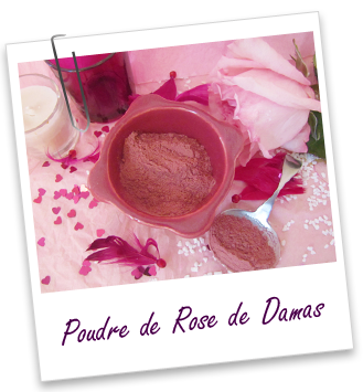 Poudre ayurvédique Rose de Damas Aroma-Zone
