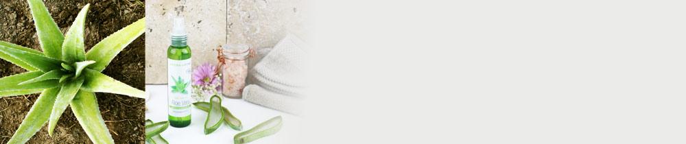 Vos recettes préférées avec notre gel d'Aloe vera BIO