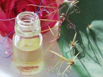 Elixir de beauté jeunesse à la Rose et à l'Iris